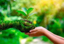 Facultad de Agronomía UdeC destaca las formas de cuidado de la Biodiversidad