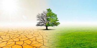 Anuncian webinar para analizar el futuro del agua en Chile