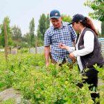 CONVOCAN A PROFESIONALES DEL AGRO COMO AGENTES PROMOTORES DEL IFE UNIVERSAL EN EL MUNDO RURAL