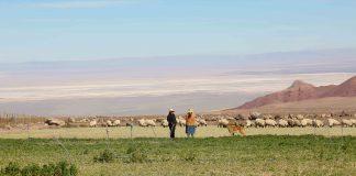 DÍA CONTRA LA DESERTIFICACIÓN Y LA SEQUÍA: PEQUEÑOS AGRICULTORES PUEDEN SER PROTAGONISTAS PARA MEJORAR SUS SISTEMAS DE RIEGO Y SUELOS