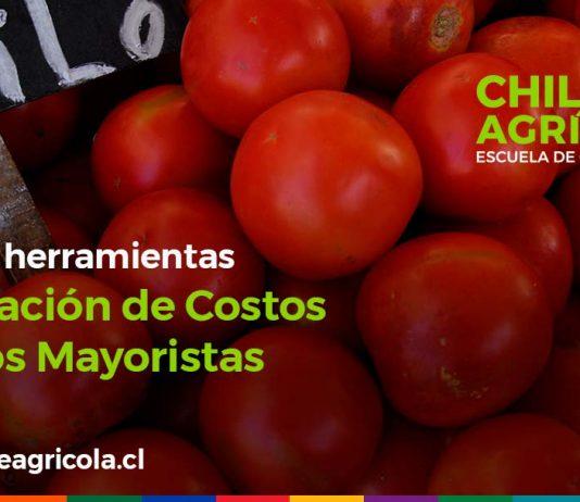 Escuela de Capacitación Online Chile Agrícola integra nuevas herramientas para simulación de costos productivos
