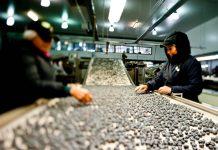 FIA destina $160 millones en nueva convocatoria para proyectos de innovación en La Araucanía