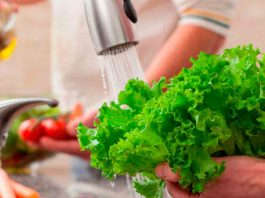 Llaman a garantizar seguridad de los alimentos para resguardar salud de las personas