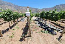 Última jornada del ciclo de charlas sobre viticultura y cambio climático presentó herramienta de manejo agronómico