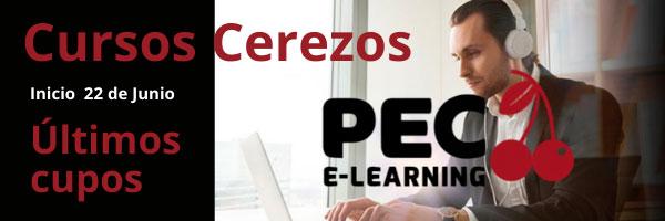 cursos cerezos e-learning pec-2