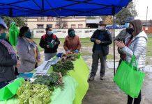 """Instalan """"Mercado Simulado"""" en Río Bueno para diferenciar productos hortícolas agroecológicos"""