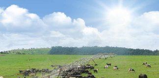Tecnología revolucionaria marca la nueva generación de la agricultura de riego