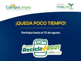 """Concurso """"Recicla Más Campo Limpio 2021"""" premiará a agricultores y empresas agrícolas desde Arica a Coyhaique, que promueven el cuidado del medioambientey la salud de las personas"""