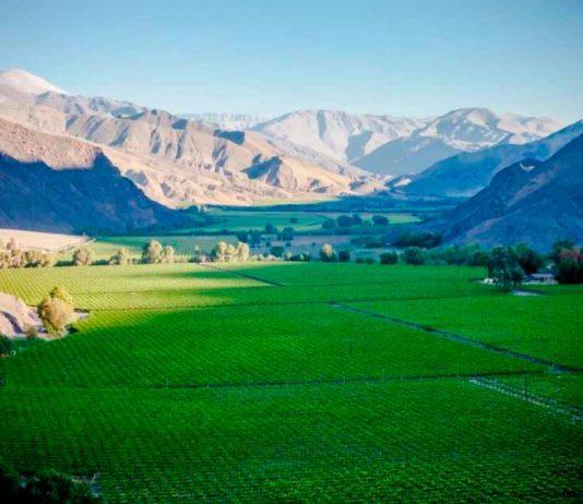 Congreso virtual abordó los desafíos hídricos para el agro en zonas desérticas