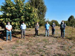 Empresa Campesina de INDAP moderniza sus instalaciones con miras a la exportación de castañas