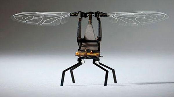 Prototipo de dron abeja