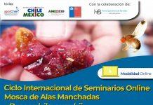SAG invita a participar de seminario internacional sobreDrosophila suzukii