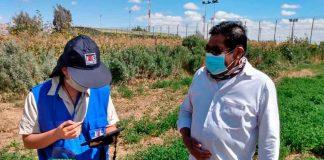 VIII Censo Nacional Agropecuario y Forestal agradece aproductores silvoagropecuarios por alta tasa de respuesta