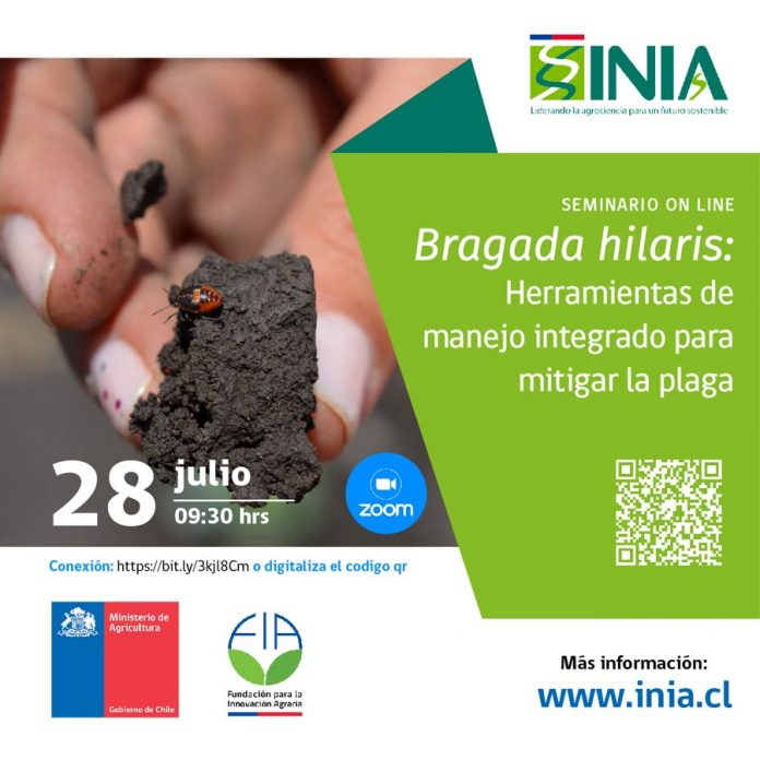 INIA y FIA invitan a seminario online sobre herramientas de manejo integrado para mitigar a la chinche pintada
