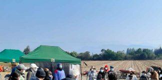 INIA La Platina realiza Día de Campo en Melipilla para transferir prácticas sustentables que eviten el uso del fuego en tareas agrícolas