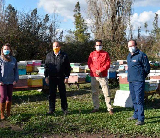 Ñuble Entrega indemnizaciones por más de $46 millones a 85 apicultores afectados por la sequía