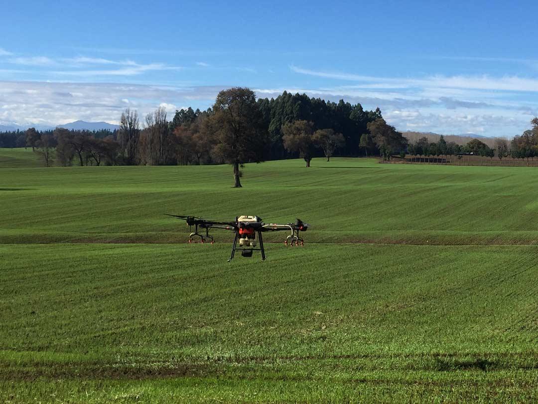 Uso de drones para la agricultura de precisión. Drones fitosanitarios.
