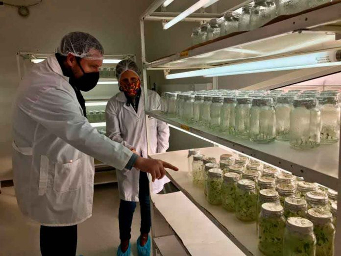 Apoyan a las mejores soluciones de innovación para el agro