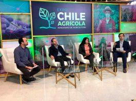 Conversatorio online analizó aporte de pequeños agricultores apoyados por INDAP durante la pandemia