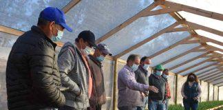En la comuna de Quinta de Tilcoco INIA Rayentué Conformó nuevo GTT de ajos