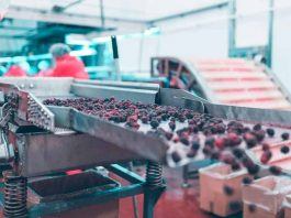 Los efectos de la escasez del papel en las exportaciones de fruta