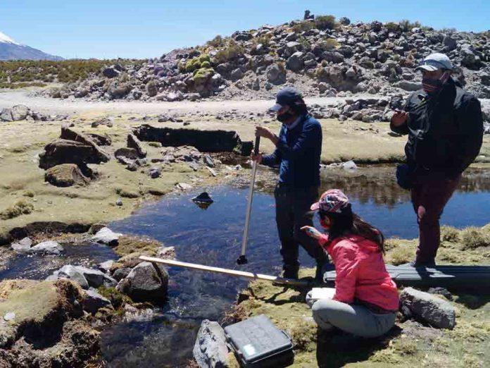 Red SIPAN Macrozona Altoandino y Precordillera Norte: Trabajando para rescatar las prácticas ancestrales de pastoreo y ganadería