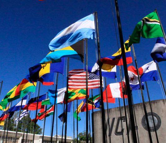 Instituto Interamericano de Cooperación para la Agricultura IICA