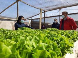 Microbiología, desalinización y economía circular: Antofagasta como un referente frente al cambio climático