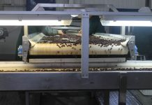 Tecnología de microondas con infrarrojo en pasas busca frenar el exceso de azúcar que impide su exportación