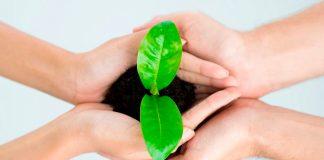 Experto entrega 7 consejos para tener una vida más sustentable