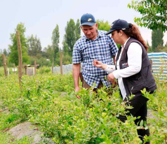 Expo Chile Agrícola concluye definiendo acciones para enfrentar la sequía y el cambio climático