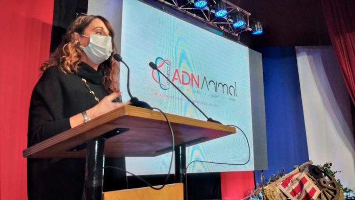 """Gobierno lanza proyecto """"Banco ADN Animal"""" para prevenir y combatir el delito de abigeato en la región del Biobío"""