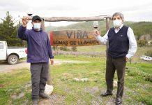 INDAP celebró Día Nacional del Vino junto a pequeños productores campesinos del valle del Itata