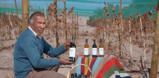 INDAP invita a los pequeños productores vitivinícolas a participar en el Catad'Or Wine Awards 2021