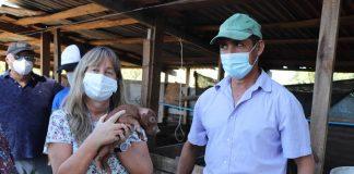 Inversiones por 121 millones de pesos tendrán productores ganaderos y porcinos de INDAP