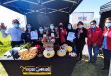Productoras de alimentos ancestrales reciben sello originario de INDAP