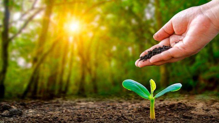 Recuperación biológica del suelo para enfrentar el cambio climático