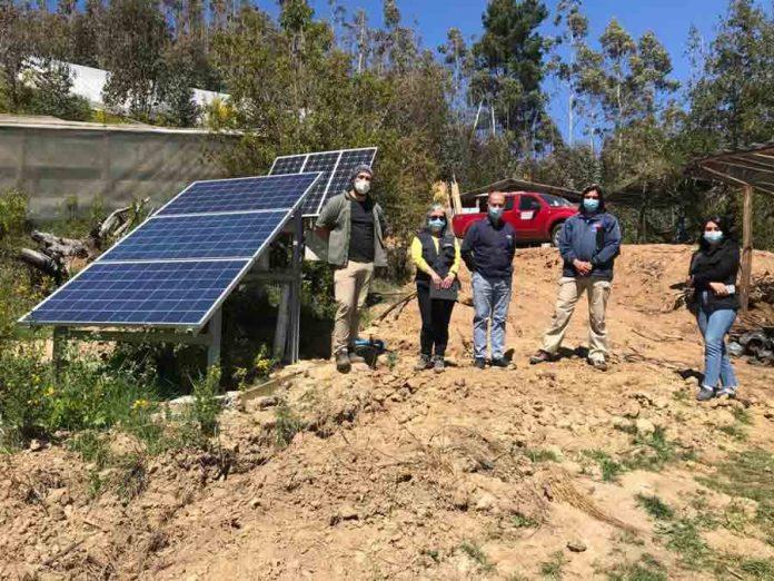 Proyectos de riego mejoran producción de hortalizas y berries de agricultores del Prodesal de Tomé